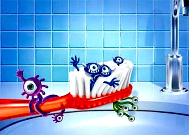 toothbrush bacteria