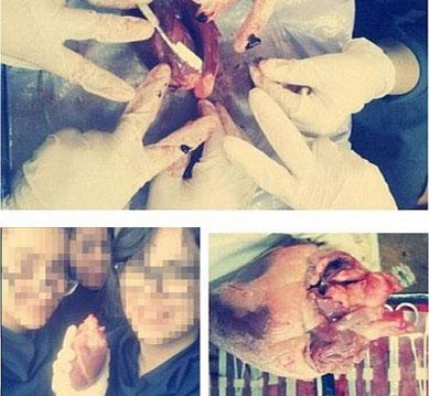 عکس سلفی دانشجویان پزشکی با اجساد